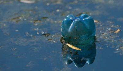 Τοξικά απόβλητα στη θάλασσα. Περιβαλλοντικά προβλήματα στην Ελλάδα.